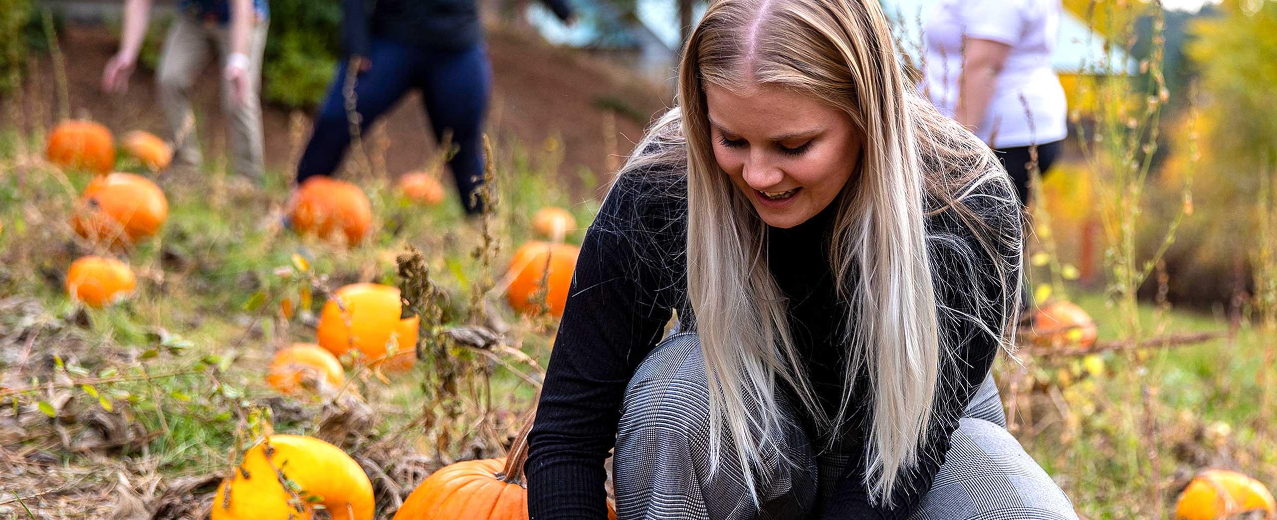 Fall family fun fest picking a pumpkin